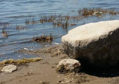 Archeologia in riva al lago