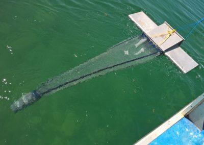 A caccia di microplastiche nel lago di Bracciano