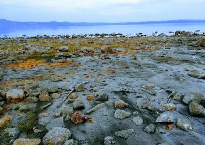 Sorgente di acque minerali